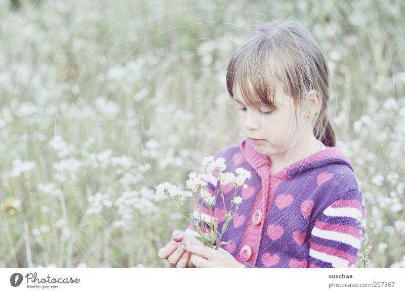 sommerbild .. im winterkleid Kind Mädchen Kindheit Kopf Haare & Frisuren Gesicht Auge Nase Mund Finger 3-8 Jahre Umwelt Natur Frühling Sommer Klima Gras Wiese