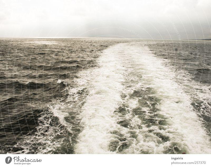 Bootsfahrt Himmel Wasser Ferien & Urlaub & Reisen Meer Freude Wolken Ferne Landschaft Freiheit Horizont Wetter Wellen Wind Klima Ausflug Tourismus
