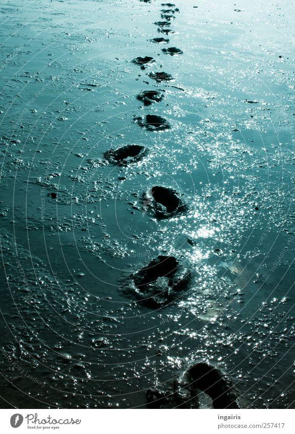 Wattwanderung Natur Ferien & Urlaub & Reisen blau Wasser weiß Meer Strand schwarz Umwelt Küste Stimmung Erde wandern laufen Ausflug Hoffnung