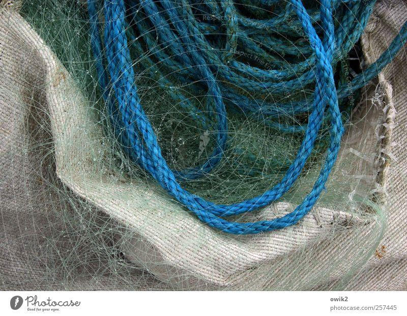 Fishermans Friend Beruf Arbeitsplatz Fischereiwirtschaft authentisch nass blau grau grün weiß Seil Netz fein fest Behälter u. Gefäße Wassertropfen Farbfoto