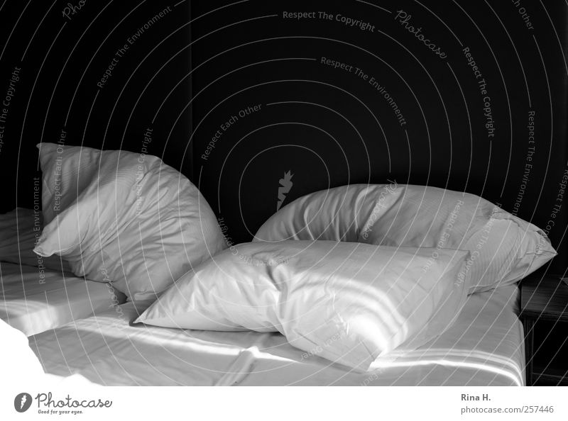 Raus aus den Federn ! weiß schwarz ruhig Erholung schlafen Häusliches Leben Bett Bettwäsche Lebensfreude Kissen Kopfkissen