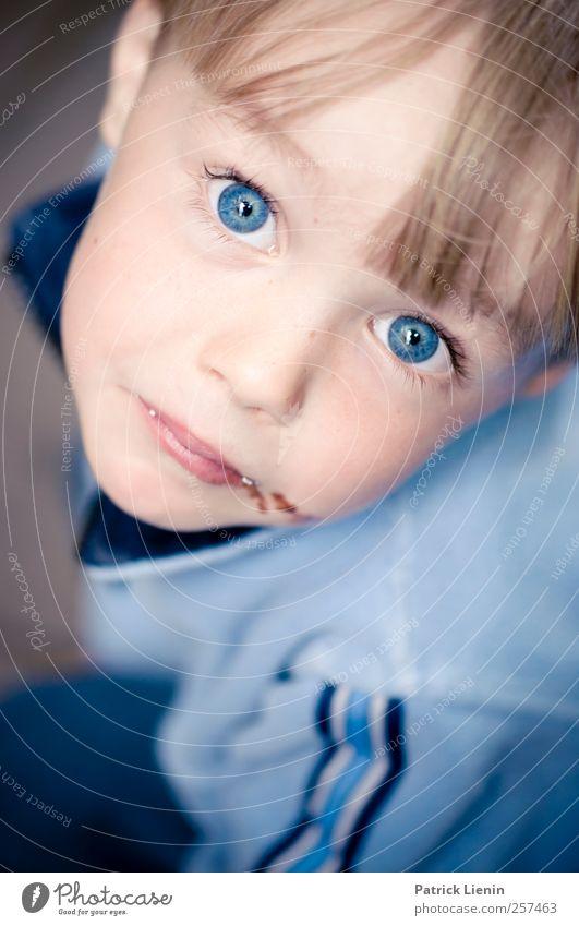blue Mensch Kind blau schön Freude Auge Junge Kopf Haare & Frisuren Kindheit maskulin frei frisch Fröhlichkeit einzigartig beobachten