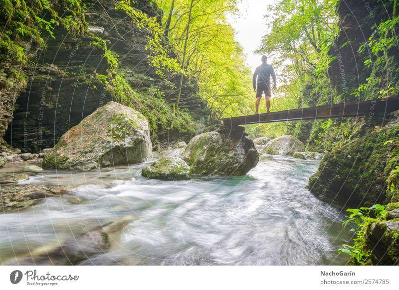 Dem Licht folgen Ferien & Urlaub & Reisen Abenteuer Freiheit wandern Joggen Mann Erwachsene 1 Mensch Umwelt Natur Landschaft Pflanze Wasser Sonnenlicht Baum