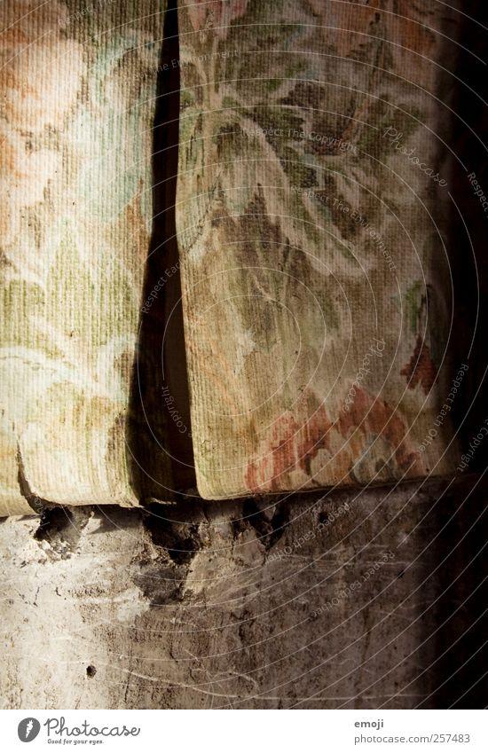 2011/12 Tapetenwechsel Mauer Wand Fassade alt Tapetenmuster Renovieren altmodisch Farbfoto Innenaufnahme Nahaufnahme Detailaufnahme Makroaufnahme Menschenleer
