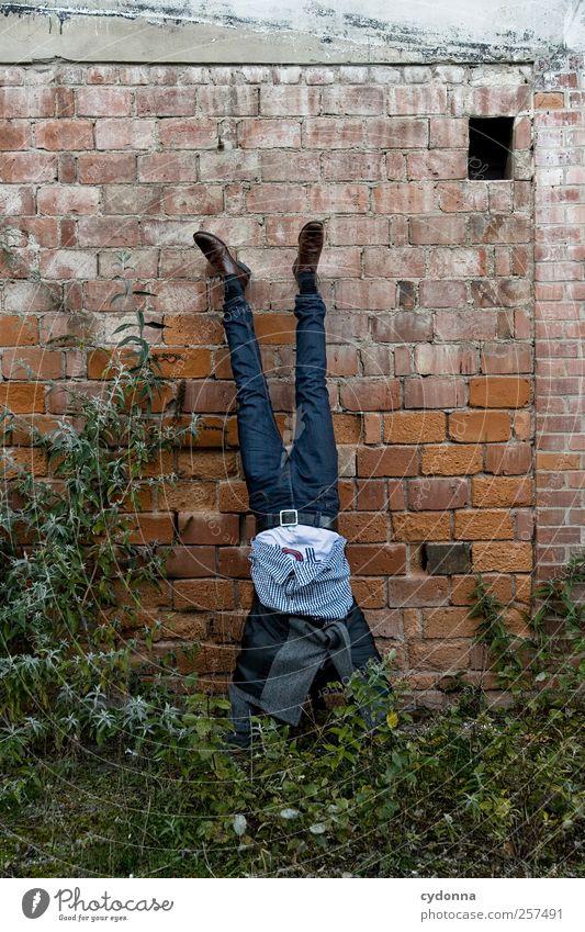 Neue Ideen für 2012 Mensch Mann Natur Freude Erwachsene Umwelt Leben Wiese Wand Mauer Stil elegant Abenteuer Lifestyle einzigartig Jeanshose