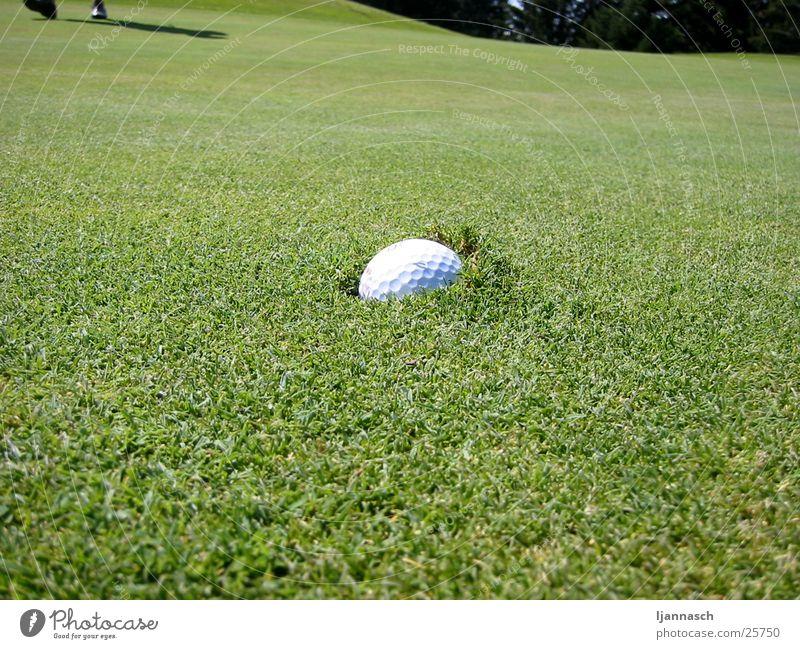 Golfball versenkt Gras Sport Pitchmarke