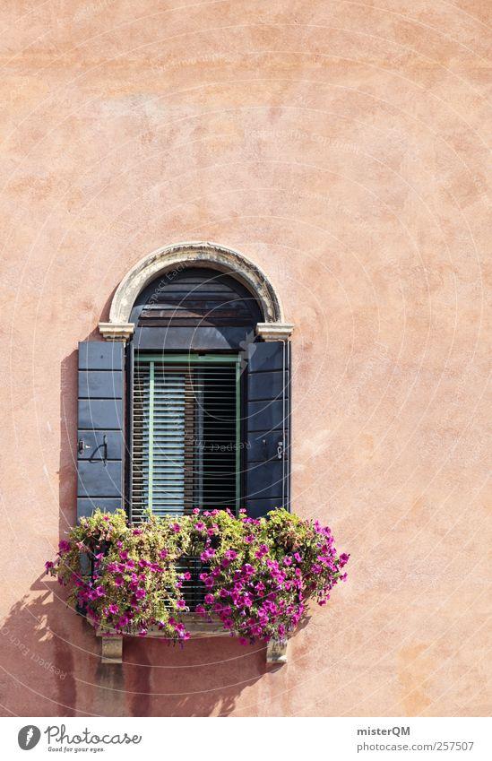Ausblick. Blume Einsamkeit Haus Fenster Kunst ästhetisch Italien Fensterladen dezent Fensterbrett Fensterrahmen Fensterplatz