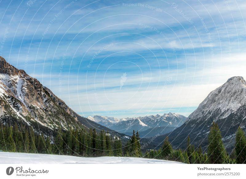 Schneebedeckte Berge und Tannenwälder Ferien & Urlaub & Reisen Tourismus Winter Winterurlaub Berge u. Gebirge Natur Landschaft Wetter Baum Wald Alpen Gipfel