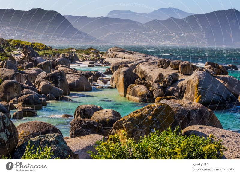 Simons Town Südafrika Ferien & Urlaub & Reisen Tourismus Ausflug Abenteuer Ferne Freiheit Strand Meer Umwelt Natur Landschaft Erde Wasser Horizont