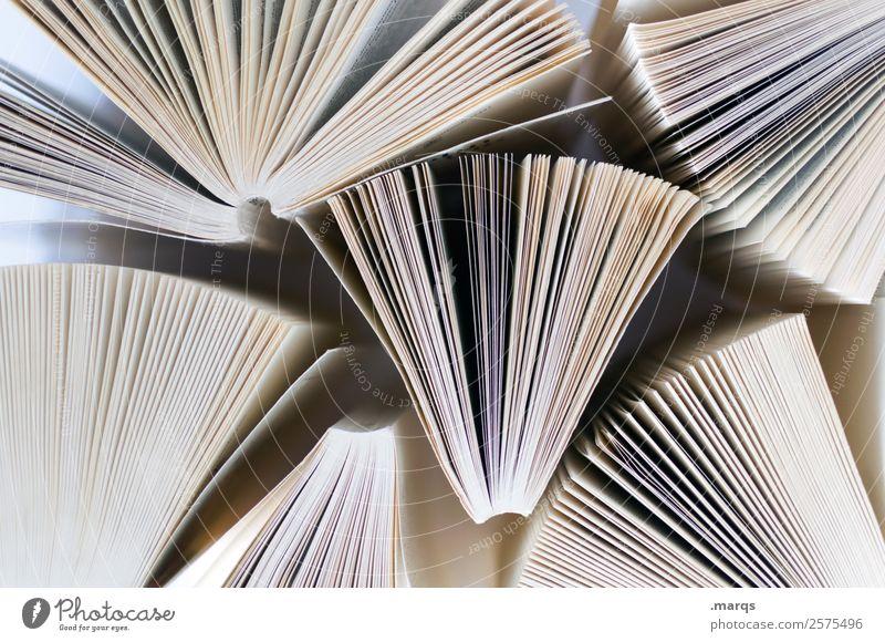 Lesestoff Freizeit & Hobby Bildung Wissenschaften Erwachsenenbildung Schule Berufsausbildung Studium Printmedien Buch lesen Buchseite lernen hell viele Weisheit