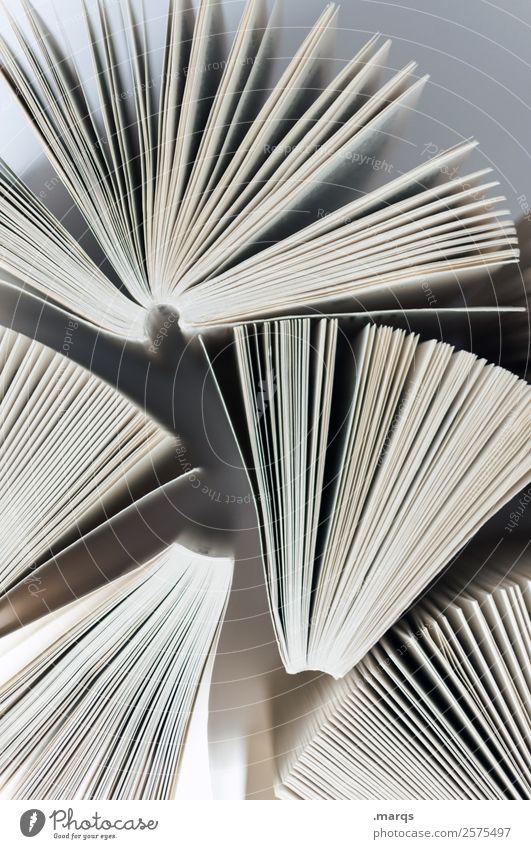Bücher Schule Freizeit & Hobby hell Perspektive lernen Buch Studium lesen Erwachsenenbildung Bildung Wissenschaften Buchseite Weisheit