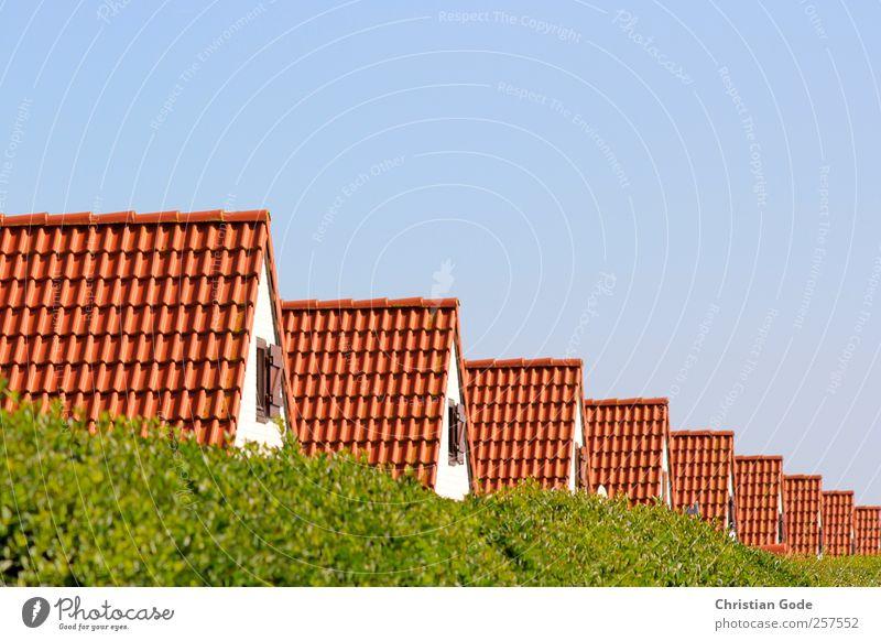Reihenhäuser grün rot Haus Architektur Garten Gebäude Autofenster Häusliches Leben Dach Bauwerk diagonal Hütte Reihe Blauer Himmel Hecke