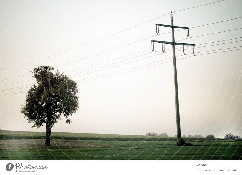Arriving somewhere, but not here Himmel Natur grün Baum Pflanze ruhig Einsamkeit Herbst Wiese Umwelt Landschaft Gras Feld Strommast Hochspannungsleitung