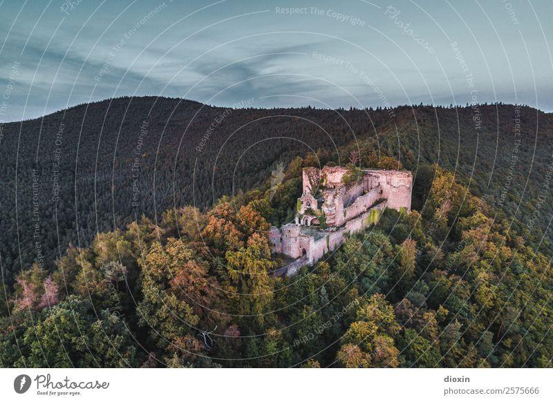 Burg Neuscharfeneck Natur Ferien & Urlaub & Reisen alt Pflanze Landschaft Baum Wald Berge u. Gebirge Umwelt Tourismus fliegen Ausflug Abenteuer authentisch
