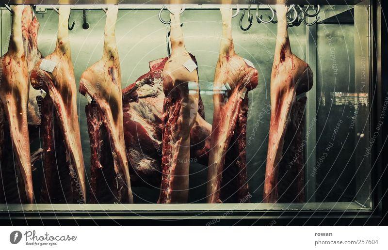 nahrhaft Lebensmittel Fleisch Wurstwaren Ernährung Übergewicht Totes Tier kalt Haken hängen hängend Schwein Schweinefleisch rot grün Kühlhaus kühlen Ausstellung
