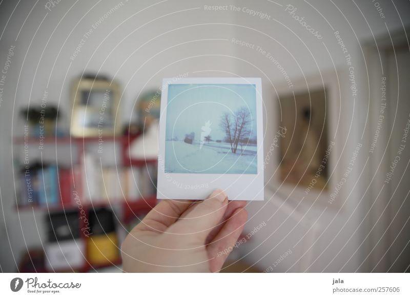snowy day Häusliches Leben Wohnung Raum Regal Hand Landschaft Winter Schnee haltend Blick Farbfoto Innenaufnahme Polaroid Tag
