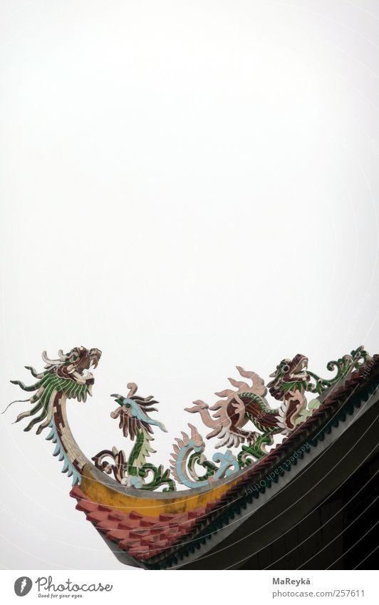 Druffn Drachengefauche Himmel Ferne grau Religion & Glaube fliegen Dach Asien schreien Drache Schwanz Kunstwerk Tempel Buddha Dachrinne Dachziegel Buddhismus
