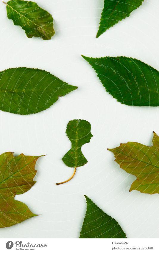 Naturbursche Mensch Jugendliche Mann Pflanze schön Junger Mann Baum Blatt ruhig Gesundheit Erwachsene Leben Umwelt Gesundheitswesen Stil