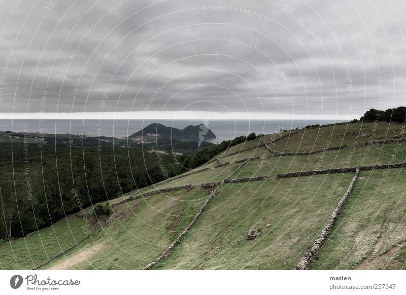 borderline Himmel Wasser Baum Meer Sommer Wolken Wald Wiese dunkel Wand Landschaft grau Gras Küste Mauer Stimmung