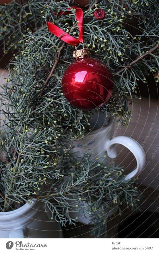 Rote Christbaumkugel, hängt am Tannenzweig. Häusliches Leben Feste & Feiern Weihnachten & Advent Handwerk Winter Pflanze Sträucher Garten
