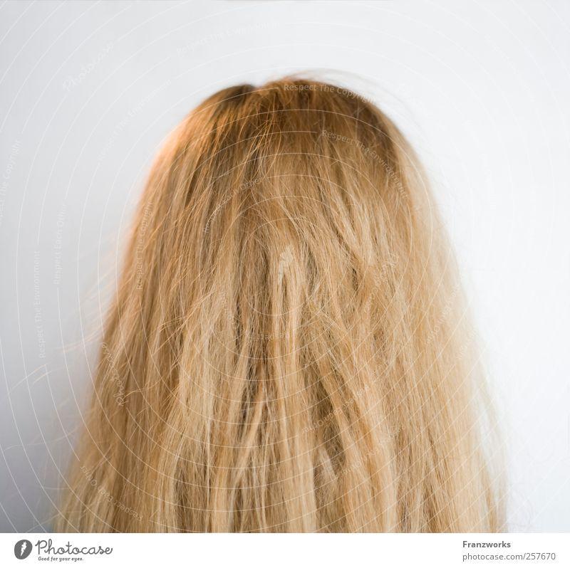Identität I Mensch Natur feminin Haare & Frisuren Kunst blond ästhetisch weich Neugier Fragen langhaarig fremd komplex Oberflächenstruktur Hinterkopf