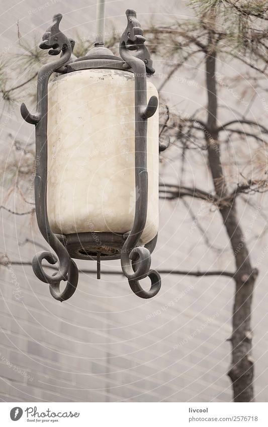 Chinesische Straßenleuchte in Xian, China Dekoration & Verzierung Lampe Kunst Architektur Natur Wolken Nebel Baum Park Denkmal Linie hängen historisch schön