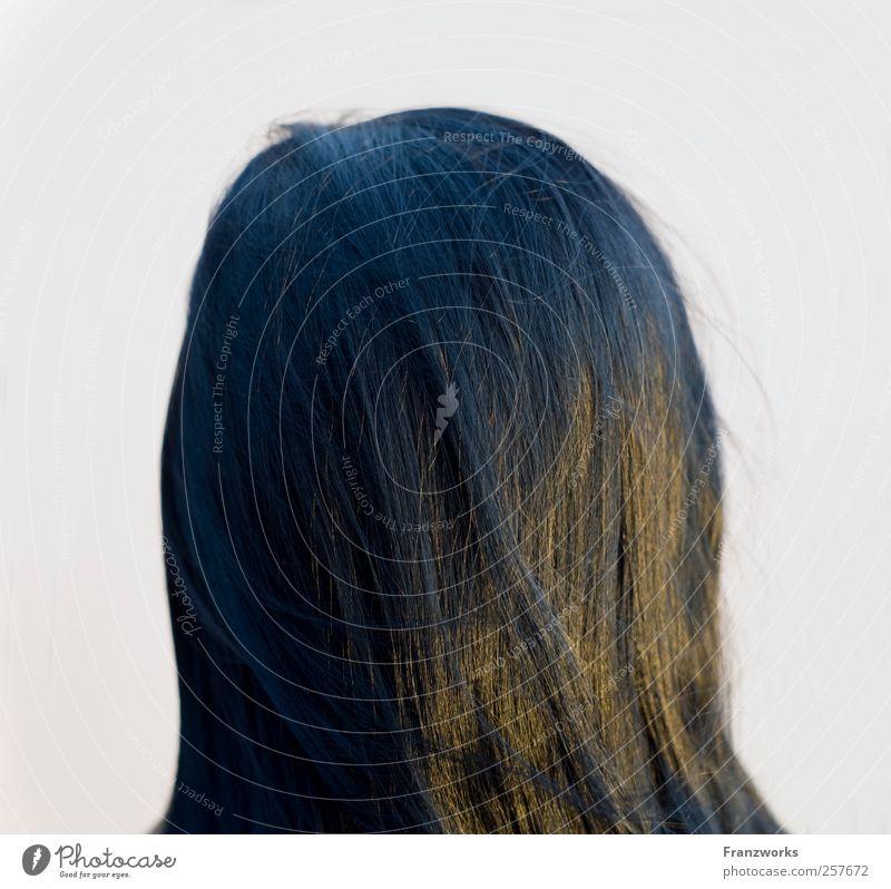Identität III Mensch feminin Junge Frau Jugendliche Haare & Frisuren 1 18-30 Jahre Erwachsene schwarzhaarig langhaarig ästhetisch Neugier weich Interesse