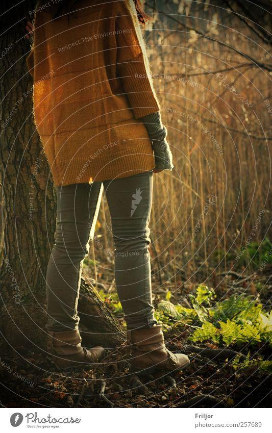 Ein Tag am See Frau Mensch Natur Jugendliche Wasser Baum Pflanze Winter Erwachsene feminin Wege & Pfade Beine Freundschaft Erde Rücken