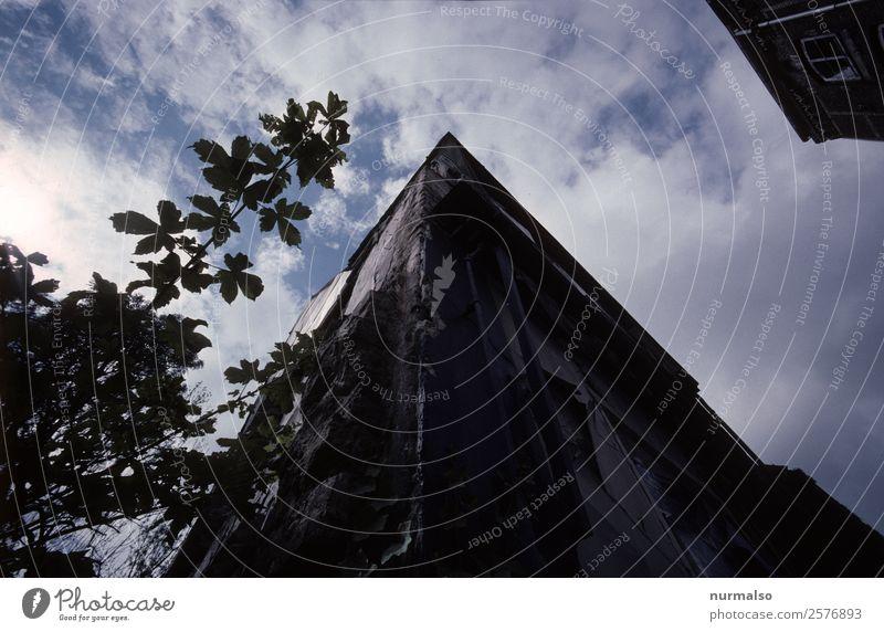 irgendwie Ecke Kunst Klima Klimawandel Wetter Schönes Wetter Stadt Menschenleer Haus Mauer Wand Fassade Fenster Dach Dachrinne Verkehr ästhetisch authentisch