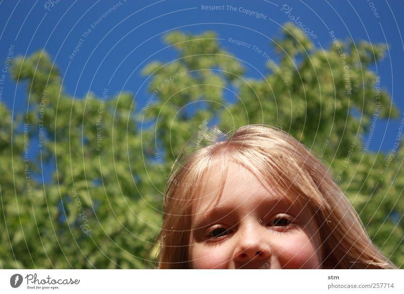 HALLO ! Kind Mädchen Kindheit Kopf Haare & Frisuren Gesicht Auge Nase 1 Mensch 3-8 Jahre Wolkenloser Himmel Baum blond langhaarig Pony authentisch frech