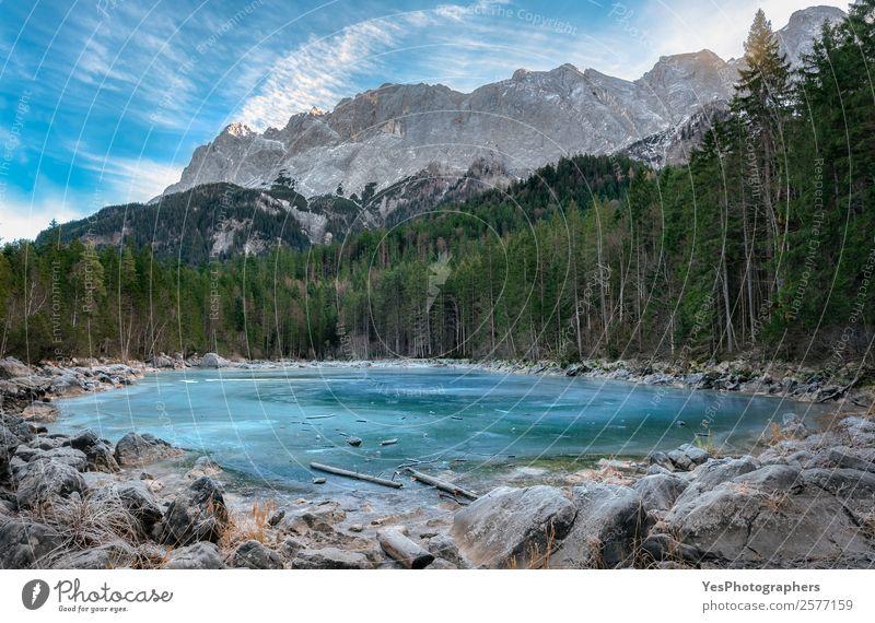 Gefrorener Alpensee und immergrüner Wald Winter Winterurlaub Berge u. Gebirge Natur Landschaft Schönes Wetter Eis Frost Felsen Gipfel See blau weiß Bayern