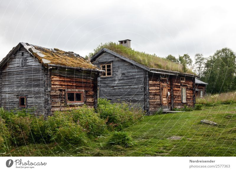 Alterserscheinungen | Nur an der Oberfläche Ferien & Urlaub & Reisen Tourismus wandern Häusliches Leben Haus Traumhaus Renovieren Handwerk Natur Landschaft