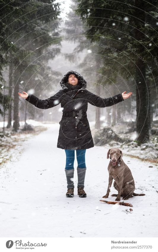 Ausflug im Winterwald Frau Mensch Natur Hund Landschaft Erholung Tier ruhig Wald Lifestyle Erwachsene Wege & Pfade feminin Schnee