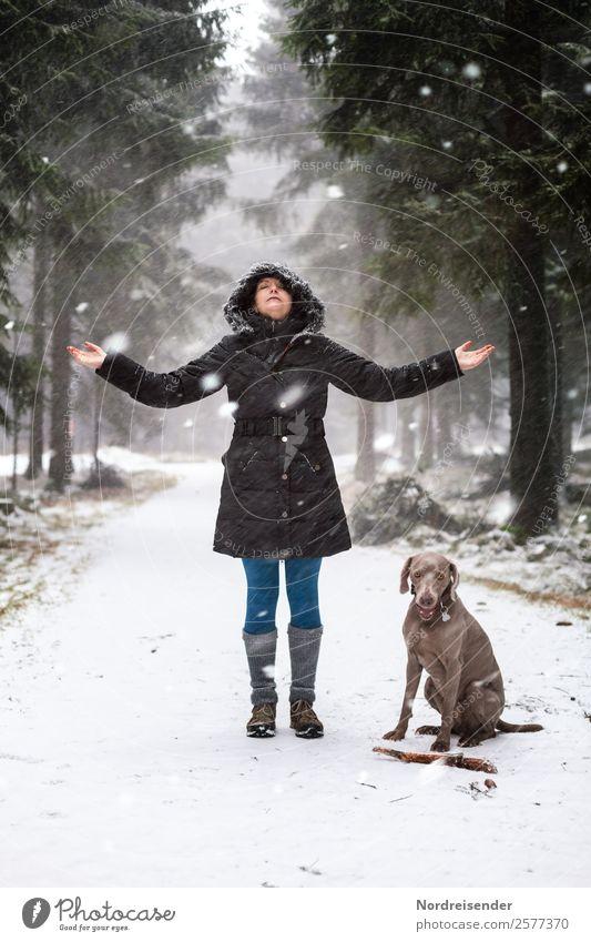 Ausflug im Winterwald Lifestyle Freizeit & Hobby Winterurlaub wandern Mensch feminin Frau Erwachsene Natur Landschaft Eis Frost Schnee Schneefall Wald