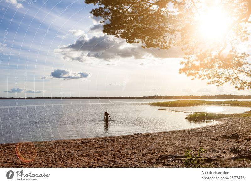 Ostsee in Nordschweden Frau Mensch Himmel Ferien & Urlaub & Reisen Sommer Wasser Sonne Baum Meer Freude Ferne Strand Erwachsene feminin Freiheit See