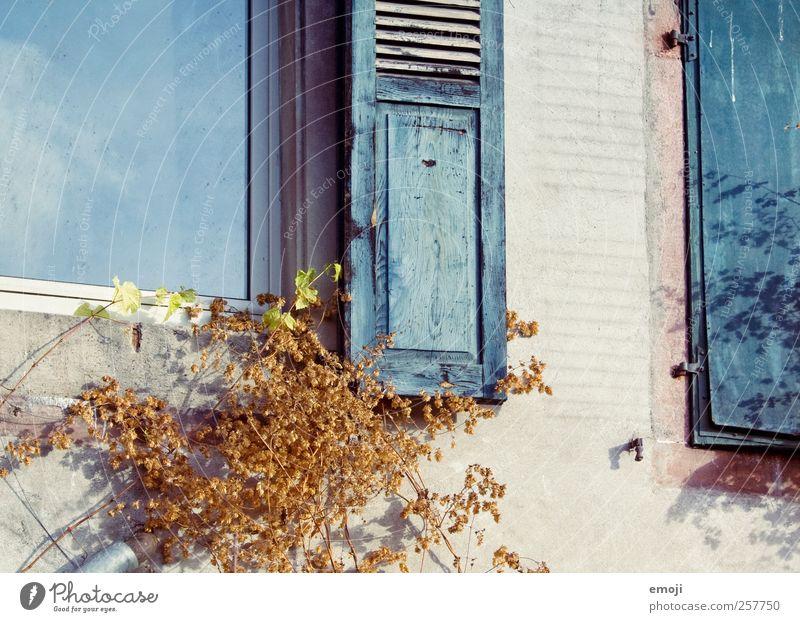 windows | retro style alt blau Haus Fenster Wand Gebäude Mauer Fassade Einfamilienhaus