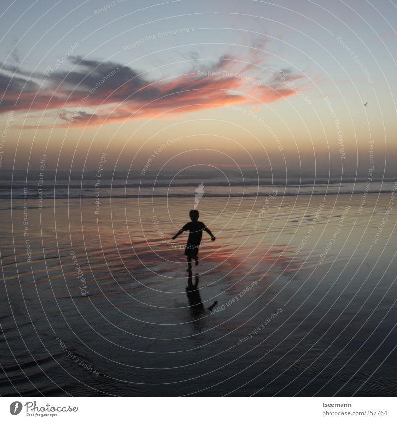 Free wet feet Mensch Kind Himmel Sonne Ferien & Urlaub & Reisen Meer Sommer Strand Wolken Ferne Spielen Freiheit Glück Küste Kindheit Horizont