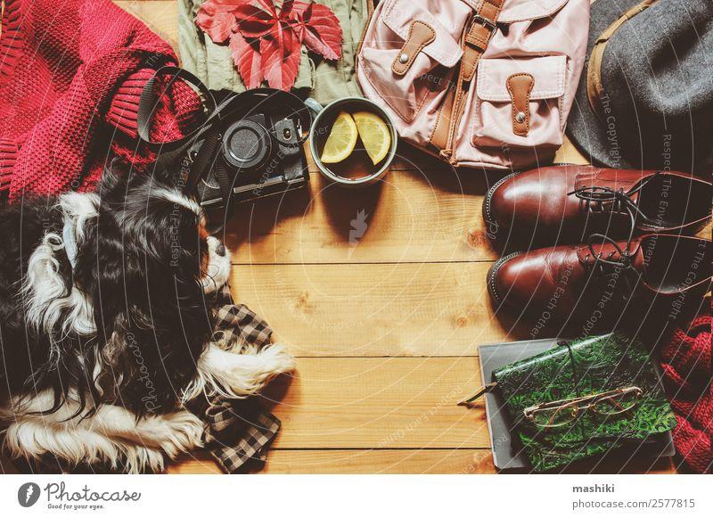 Herbstlich gemütliche Flachlage mit Spanielhund Lifestyle Stil Ferien & Urlaub & Reisen Ausflug Winter Fotokamera Frau Erwachsene Mode Bekleidung Pullover