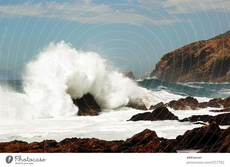 Kraftvoll Umwelt Natur Landschaft Urelemente Erde Wasser Himmel Wolken Wellen Küste Meer hell nass natürlich wild blau braun weiß stark Klippe Felsen Wellengang
