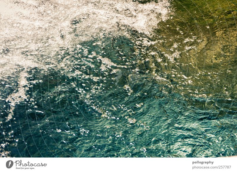 Erfrischend blau Wasser grün Sommer Glück See frisch Fluss Sauberkeit Schönes Wetter Bucht Blase blasen exotisch Erfrischung Bach