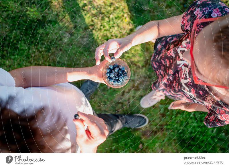 Frau Mensch Jugendliche Mann Junge Frau Sommer grün Junger Mann Freude Essen Lifestyle Erwachsene Lebensmittel natürlich Garten oben