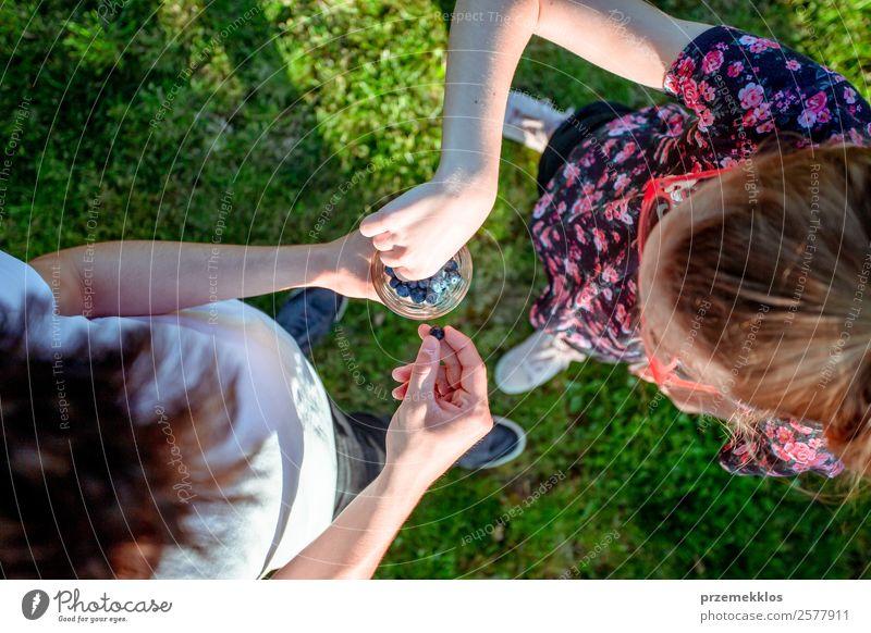 Mädchen und Junge genießen es, die frischen Heidelbeeren im Freien zu essen. Lebensmittel Frucht Ernährung Essen Bioprodukte Vegetarische Ernährung Diät Glas