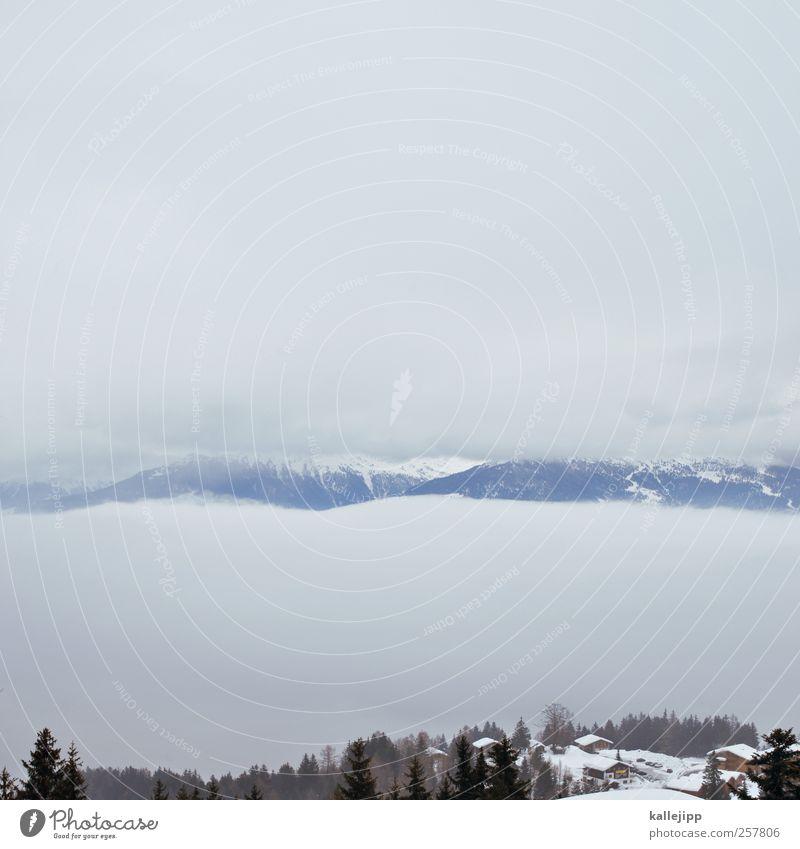 zwischen den wolken Himmel Natur Landschaft ruhig Wolken Winter Umwelt Berge u. Gebirge Felsen Nebel Alpen Hügel Schneebedeckte Gipfel Schweiz Tanne Tal
