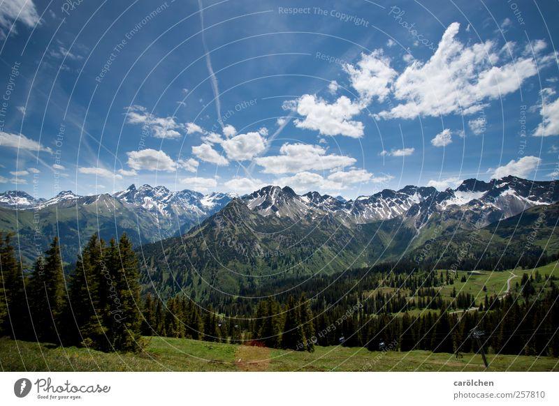 Allgäu Natur blau grün Wald Umwelt Landschaft Berge u. Gebirge Alpen Blauer Himmel Oberstdorf