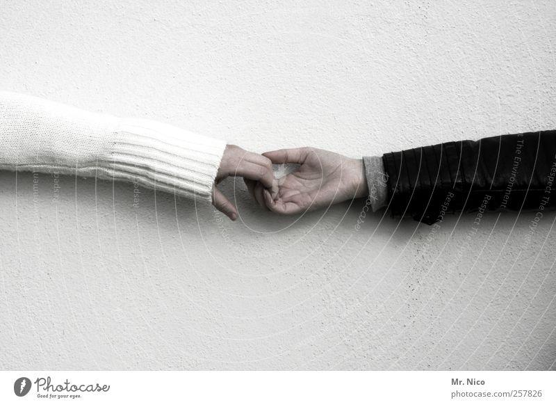 hands Freundschaft Arme Hand Finger Pullover Leder berühren schwarz weiß Vertrauen Sympathie Zusammensein Solidarität trösten Zuneigung Intuition Intimität