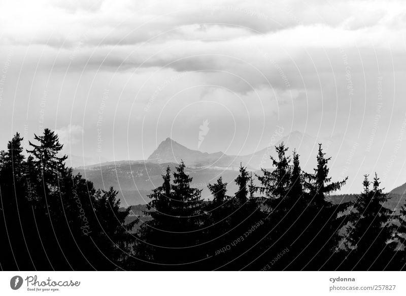 So ein Wetter Natur schön Sommer Wolken ruhig Einsamkeit Wald Leben Umwelt Landschaft Berge u. Gebirge träumen Regen Wetter Horizont Zeit