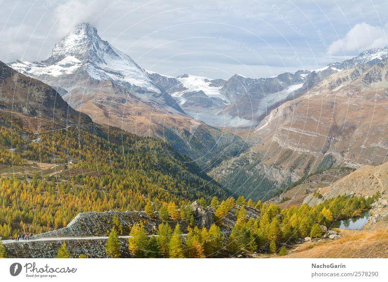 Traumhafte Landschaft auf dem Matterhorn in der Schweiz Umwelt Natur Himmel Wolken Sonnenaufgang Sonnenuntergang Frühling Sommer Wetter Baum Wald Hügel Felsen