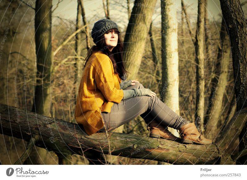 Ausblick Mensch Natur Jugendliche Baum Pflanze Winter Erwachsene Wald gelb Herbst feminin Freiheit Glück braun natürlich Ausflug