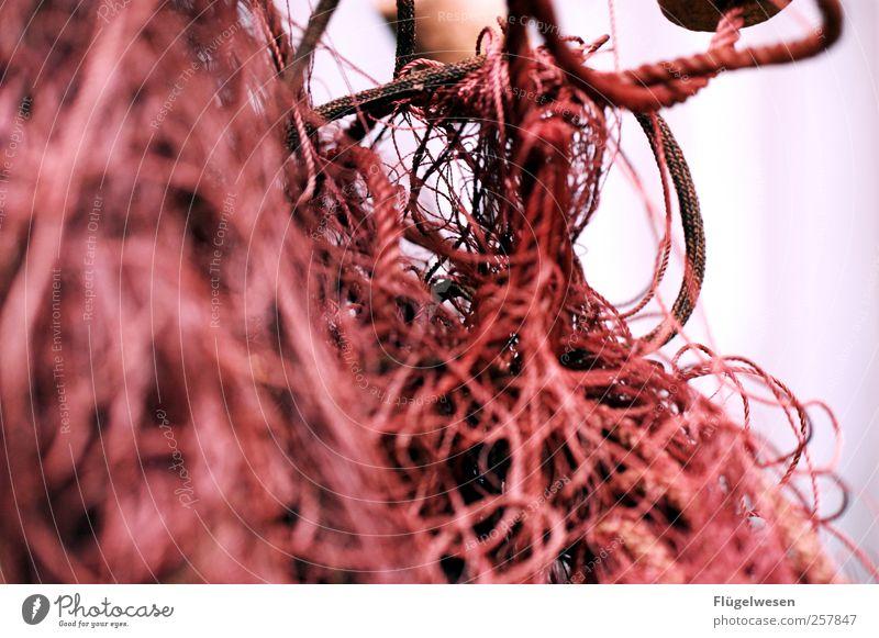 Mal wieder kein Netz? Netzwerk durcheinander Fischereiwirtschaft Fischernetz