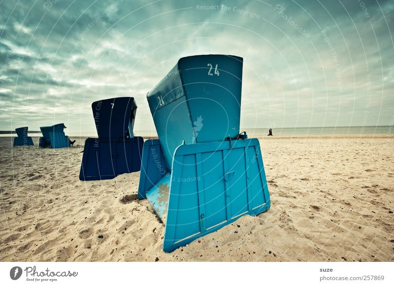 Beach Boys Himmel Natur blau Sommer Meer Strand Umwelt Landschaft Herbst Freiheit Holz Sand Küste Luft Horizont Wetter